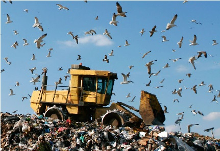 Landfill Working